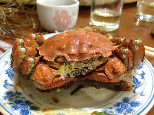 shanghai hairy crabs